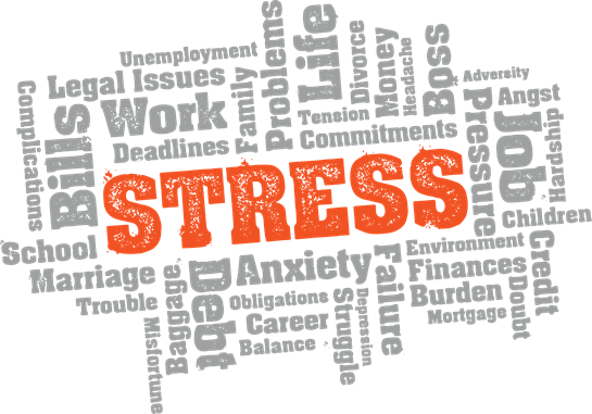 stress coursework Gemma shares a few tips for those of you who take coursework subjects how to  deal with coursework stress, through mindfulness and.