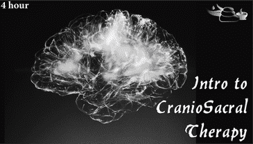 Introduction to CranioSacral Therapy